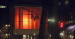 Una inmensa jaula con murciélagos sorprende en calles de Holanda