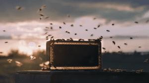 Una empresa de sonido nos muestra el zumbido de las abejas en pro de ellas mismas