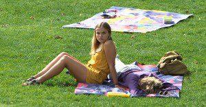 ¿Buscas un mantel para tu picnic? Este billboard te lo da