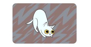 ¿Qué significan los gestos que hace tu gato?