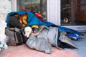 indigentes-perros-lealtad-11
