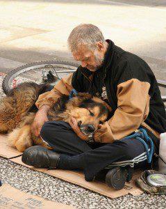 indigentes-perros-lealtad-2