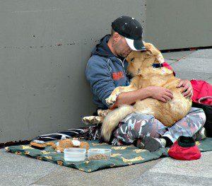 Poderosas imágenes que nos muestran la lealtad de los perros con sus amos indigentes