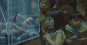 Un acuario deja sorprendidos a los niños con un ejemplar sin igual
