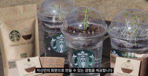Una excelente iniciativa que da una segunda vida a los vasos descartables de Starbucks