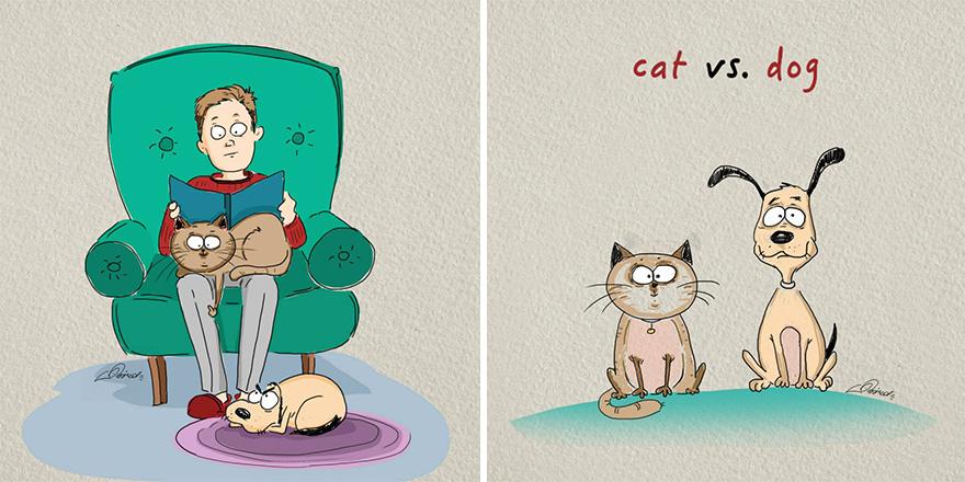 gatos-vs-perros-diferencias