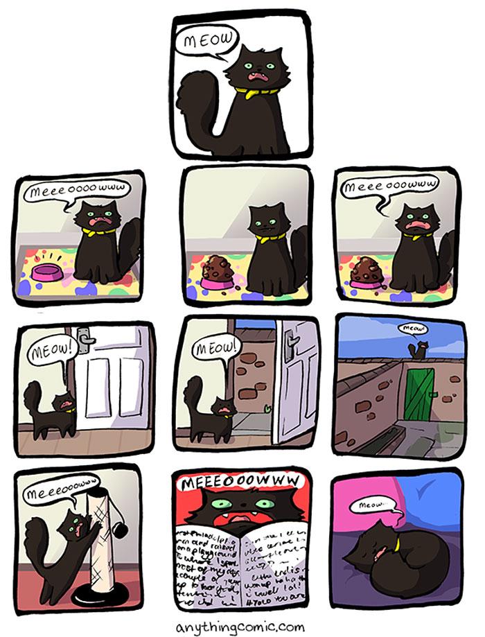 19-ilustraciones-detallan-como-es-vivir-con-gatos-10