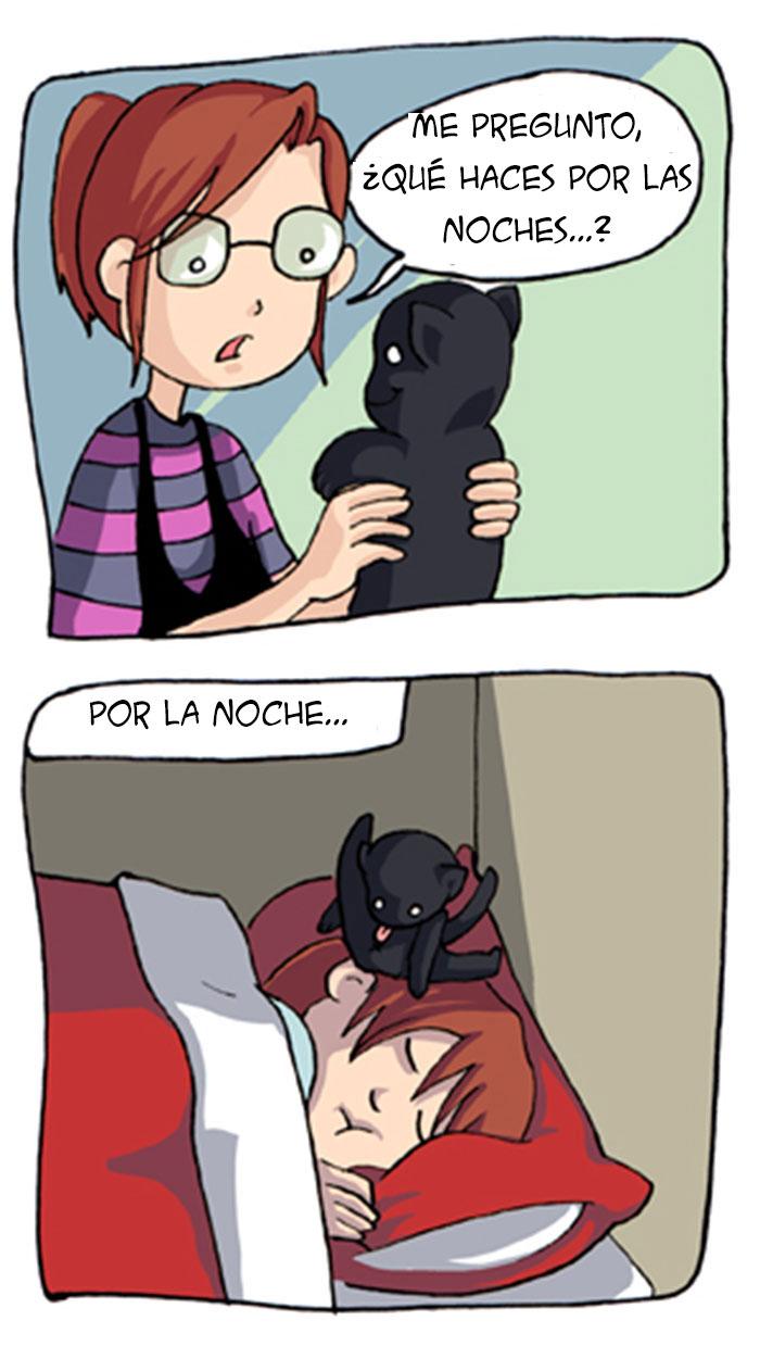 19-ilustraciones-detallan-como-es-vivir-con-gatos-14