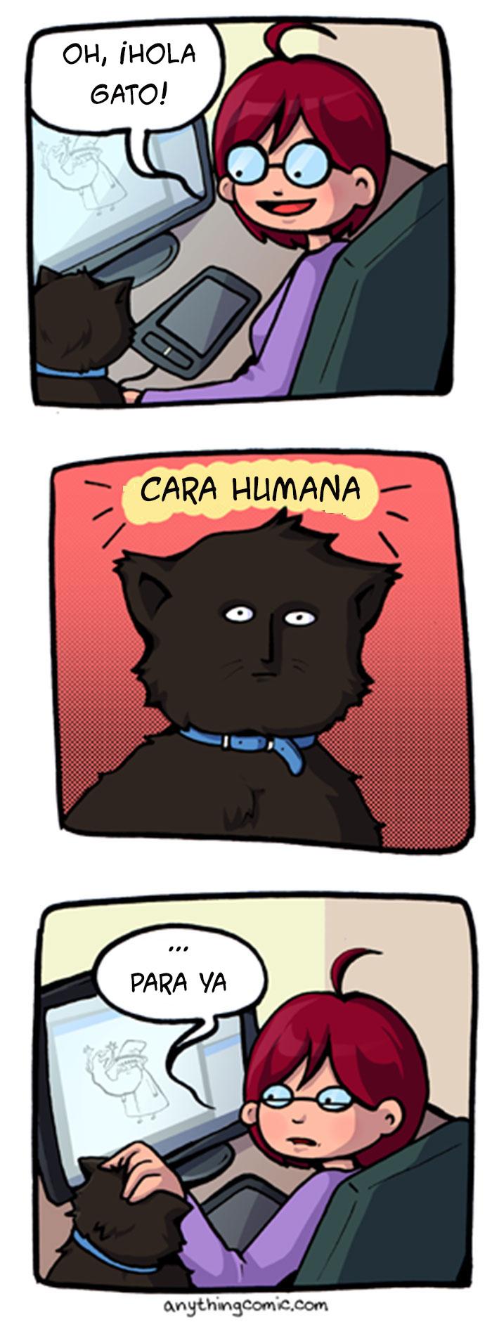 19-ilustraciones-detallan-como-es-vivir-con-gatos-16