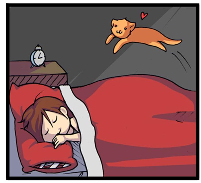 19-ilustraciones-detallan-como-es-vivir-con-gatos-18