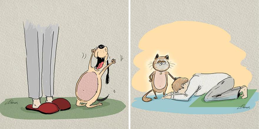 gatos-vs-perros-diferencias-3