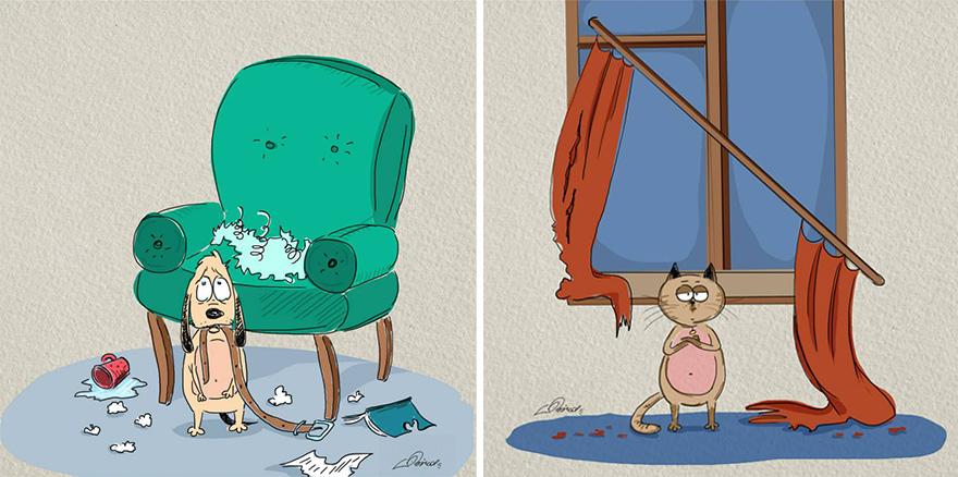 gatos-vs-perros-diferencias-5