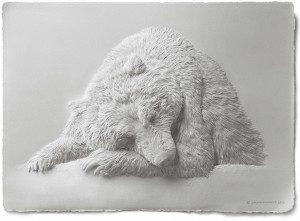 Artista transforma el papel y lo convierte en hermosos animales