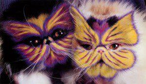 ¿Pintarías así a tu gato?