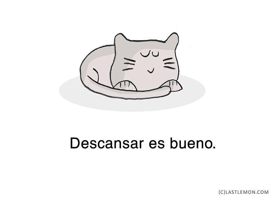 gato-relajado-02