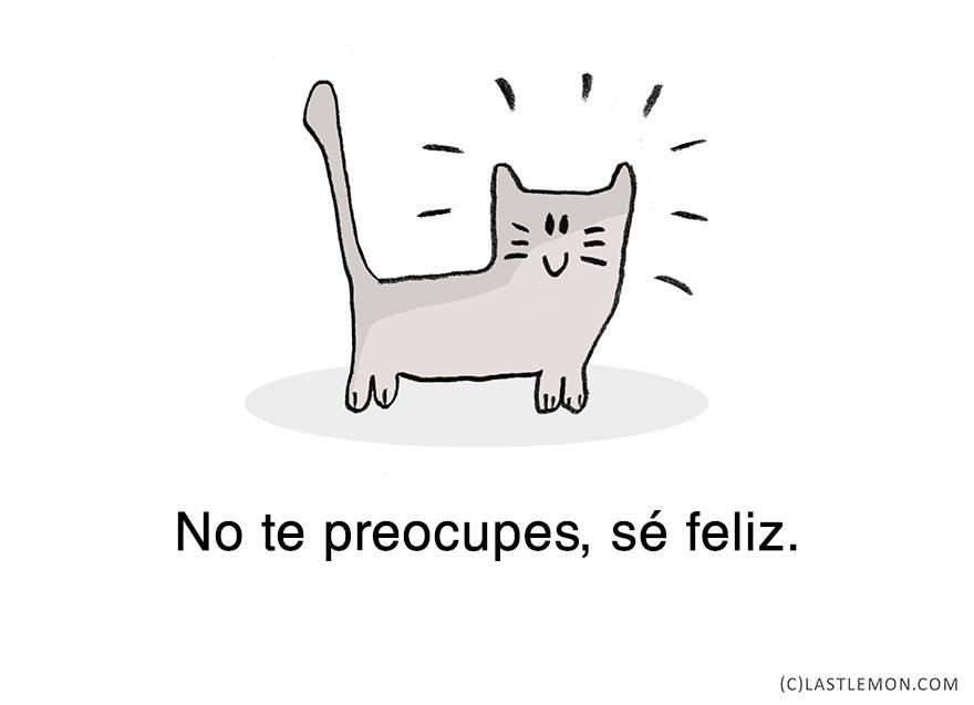gato-relajado-13