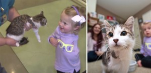 Niña y pequeño gatito son mejores amigos