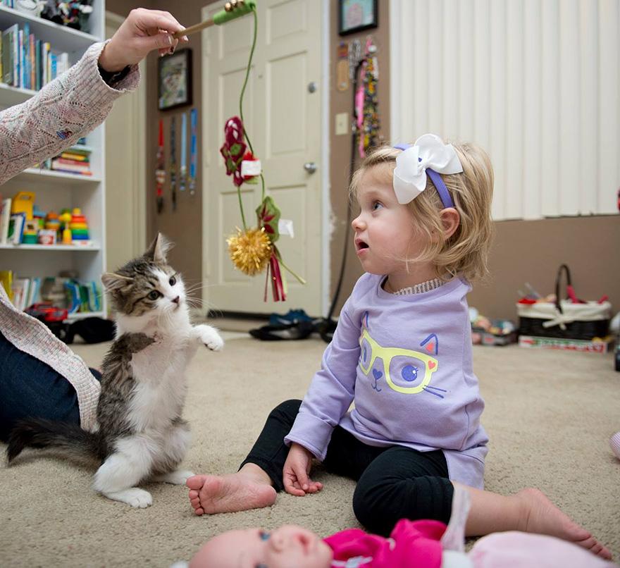 niña-y-pequeño-gatito-son-mejores-amigos