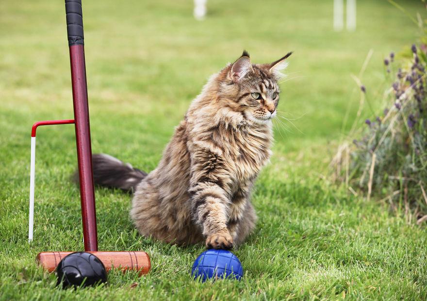 Conoce el arte de esta niña autista y su singular ayudante gato jugando