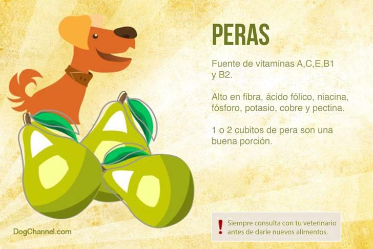 Qué frutas puedo darle de comer a mi perro peras