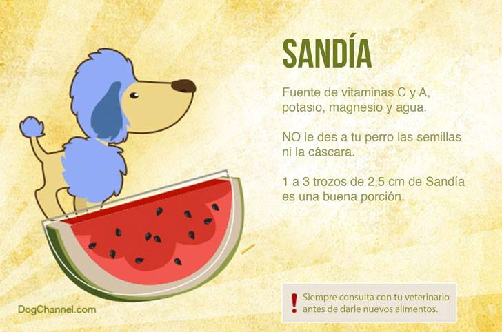 Qué frutas puedo darle de comer a mi perro sandia
