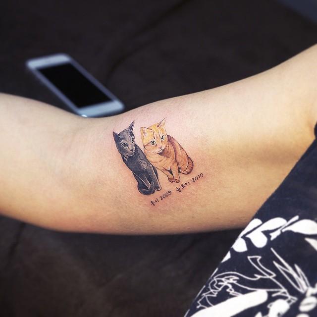 cats_by_sol_tattoo_mott