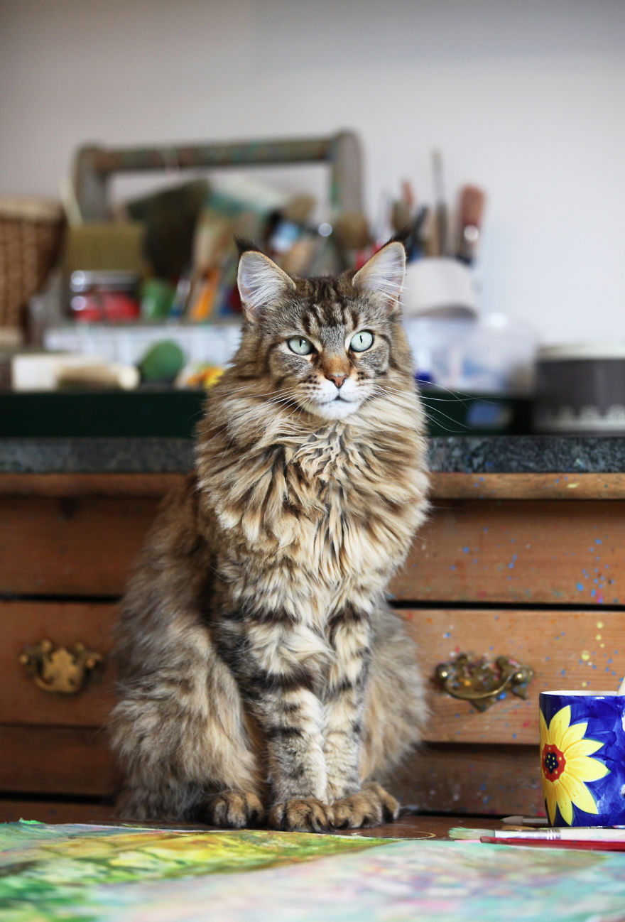 Conoce el arte de esta niña autista y su singular ayudante gato