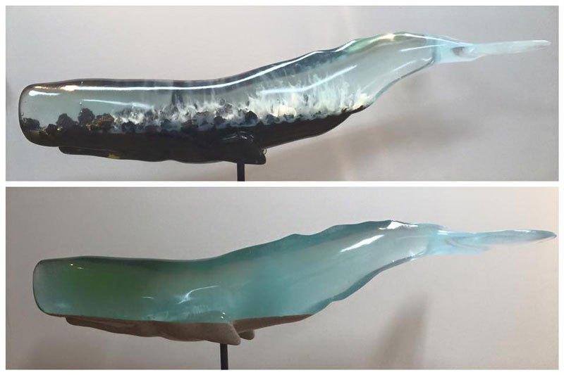 el-oceano-interior-de-las-ballenas-16