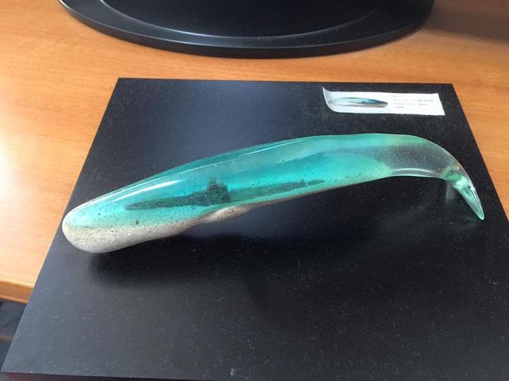el-oceano-interior-de-las-ballenas-6