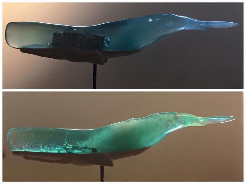 el-oceano-interior-de-las-ballenas-9