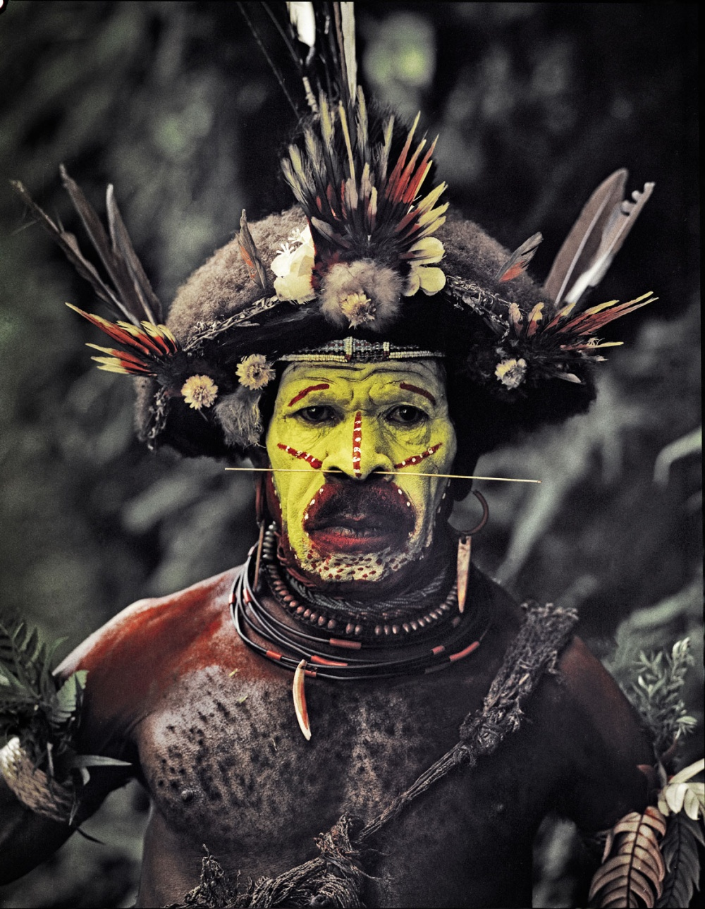 25 fotografías de tribus que están en peligro de extinción 06