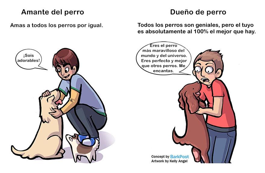 Divertidas diferencias entre ser amante de los perros y ser dueño de uno amor
