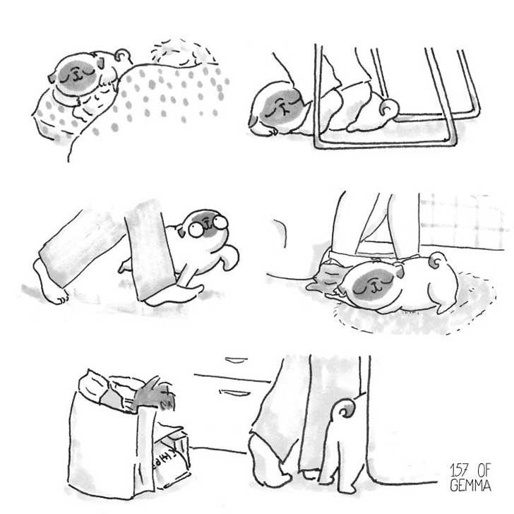 Divertidas ilustraciones que solo los dueños de los Pug entenderán 04
