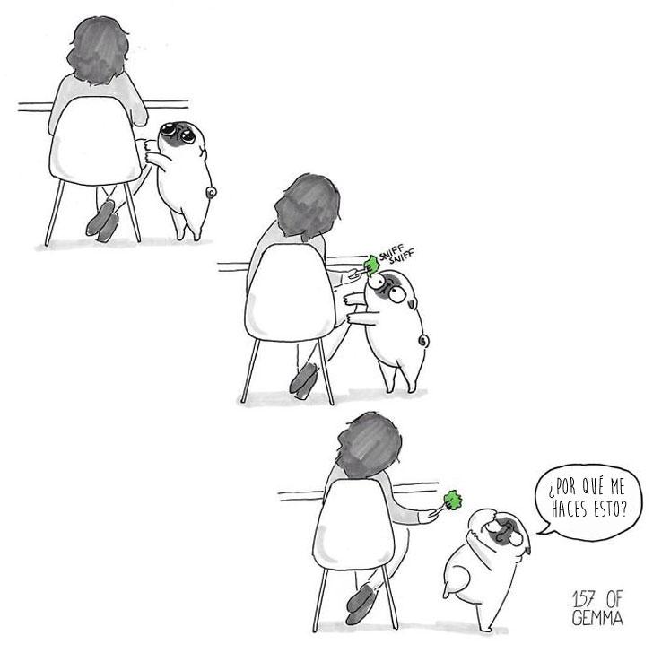 Divertidas ilustraciones que solo los dueños de los Pug entenderán 19