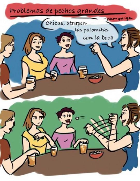 Ilustraciones que sólo las mujeres con pechos grandes entenderán palomitas