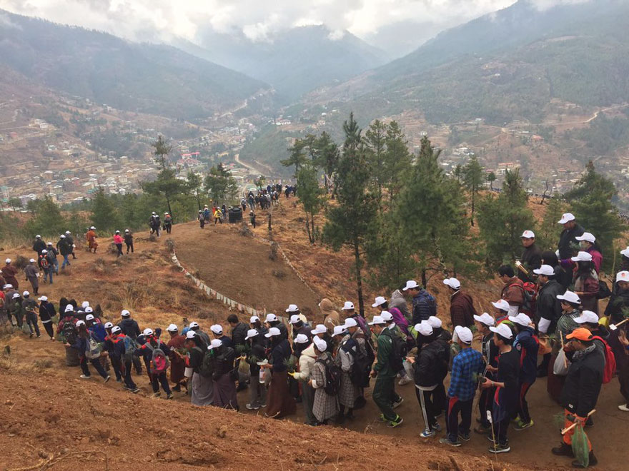 La llegada del nuevo príncipe de Bután es celebrada con 108,000 árboles plantados 06