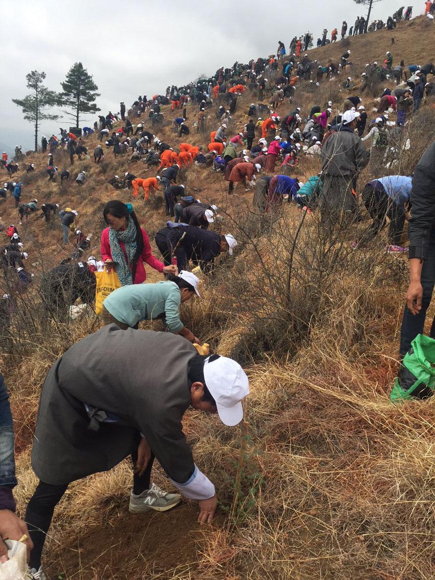 La llegada del nuevo príncipe de Bután es celebrada con 108,000 árboles plantados 07