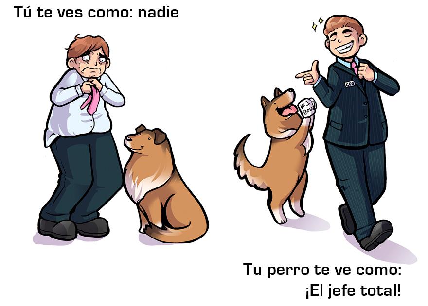 La manera cómo los perros ven a sus dueños 01