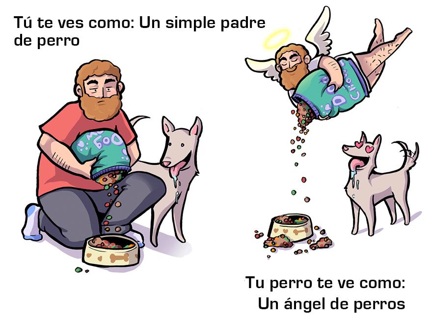 La manera cómo los perros ven a sus dueños 03