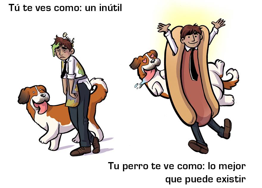 La manera cómo los perros ven a sus dueños 10