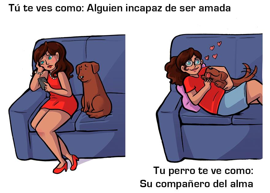 La manera cómo los perros ven a sus dueños 2