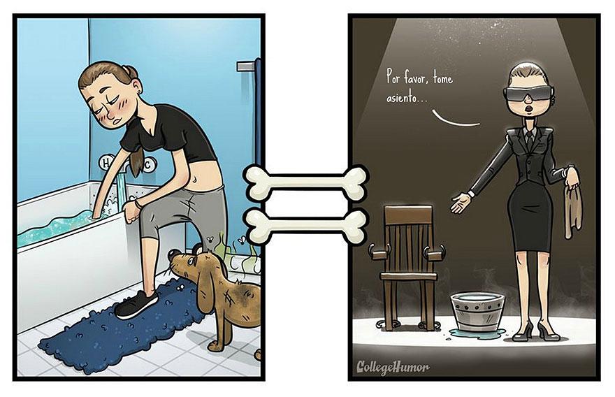 La perspectiva de un perro vs. la de un humano baño