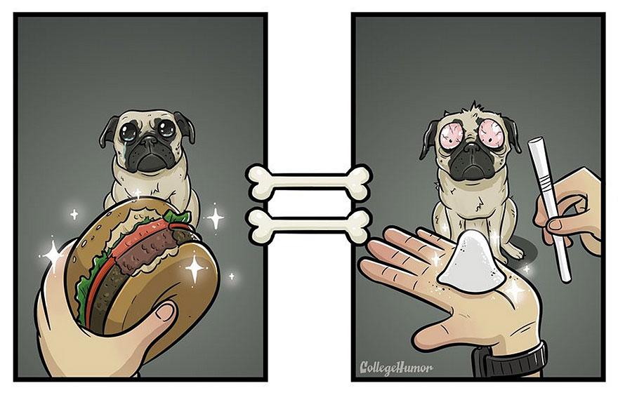 La perspectiva de un perro vs. la de un humano malo