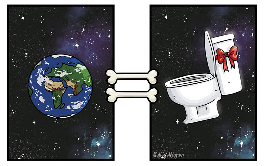La perspectiva de un perro vs. la de un humano mundo