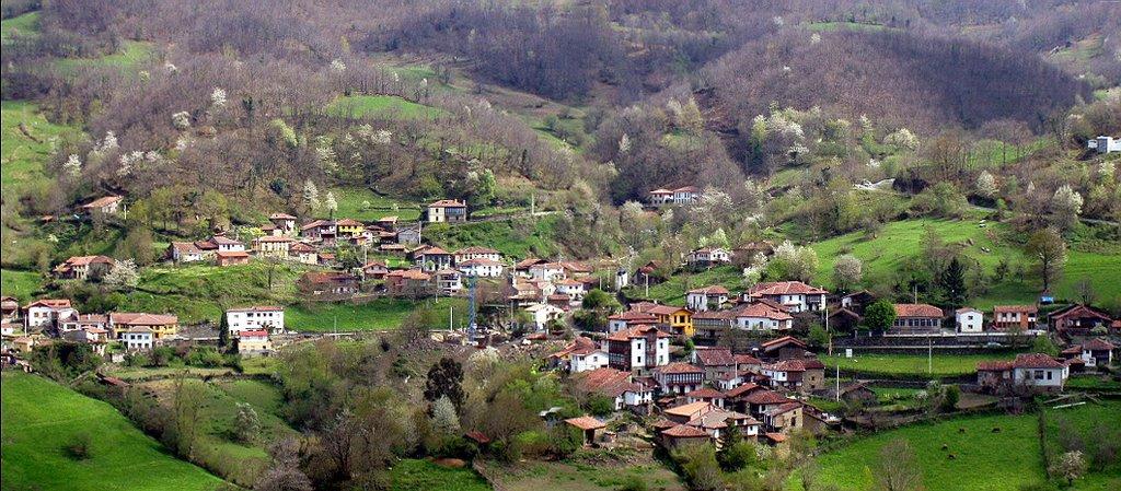 Estas son las ciudades en las que te pagan por vivir en ellas Ponga-Asturias