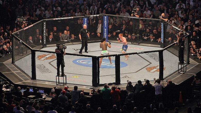 UFC vs WWE deporte de artes marciales mixtas contra la lucha libre octagono