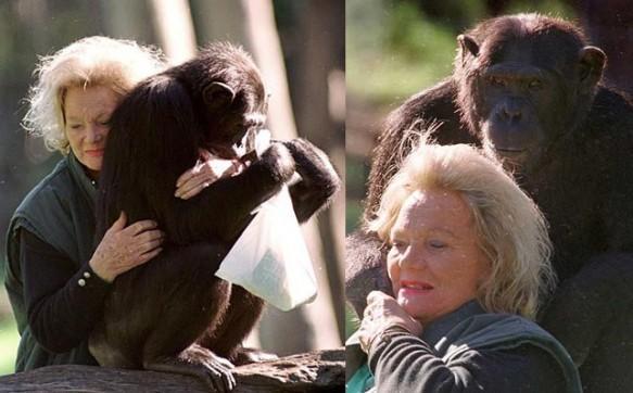Conoce a las mascotas más ricas del mundo kalu