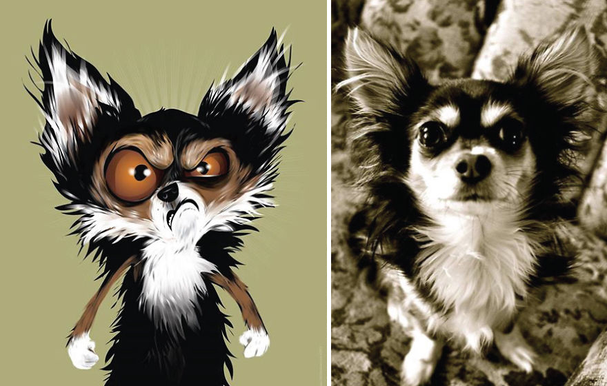 Artista crea divertidos retratos de mascotas según cómo sus dueños las describan 08