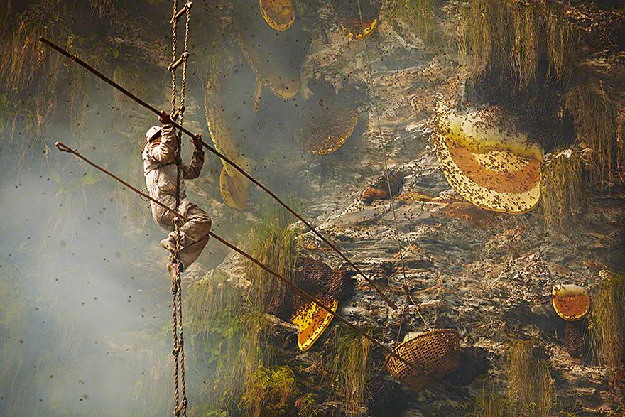 Cazadores de miel de los acantilados del Himalaya1