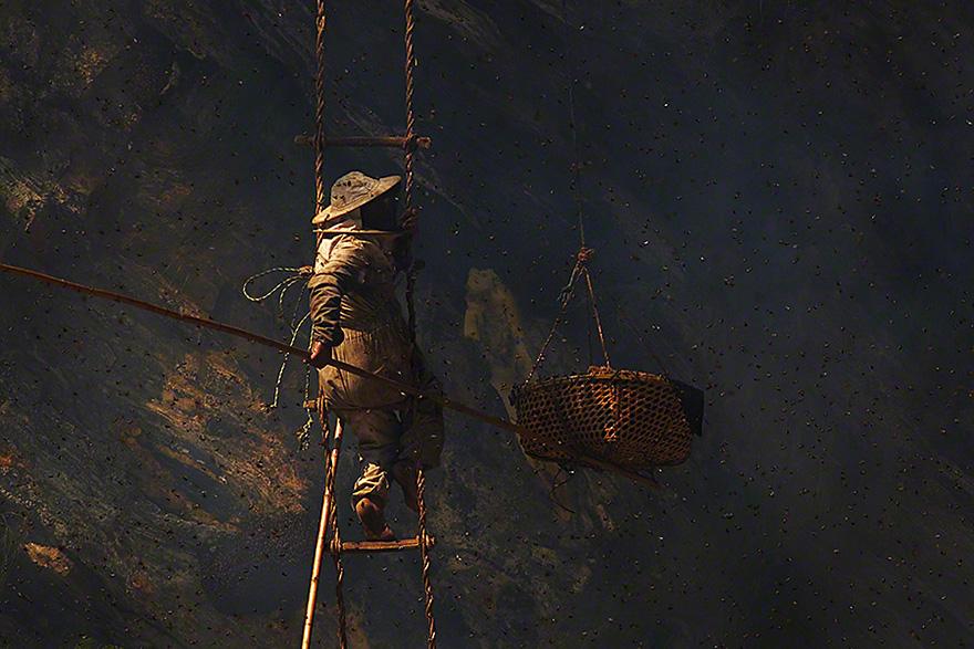 Cazadores de miel de los acantilados del Himalaya2